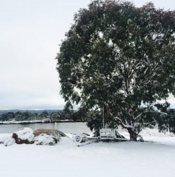 Alure Stanthorpe: snow fallen near reception